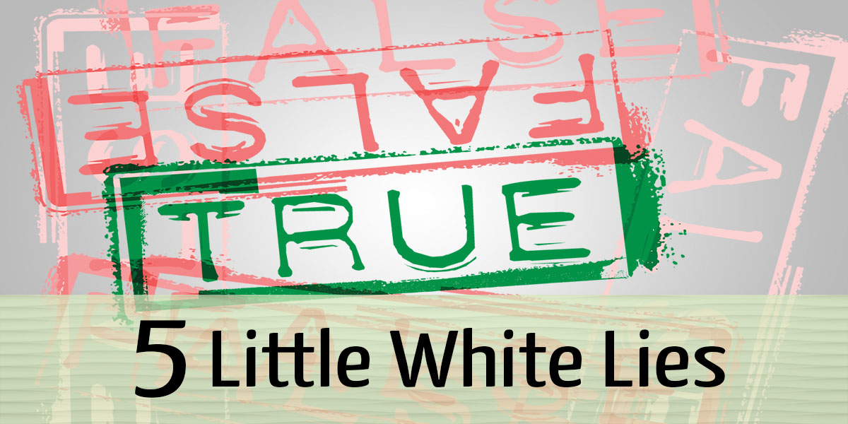 "5 ""White Lies"" You Might Hear From a Merchant Account Provider"