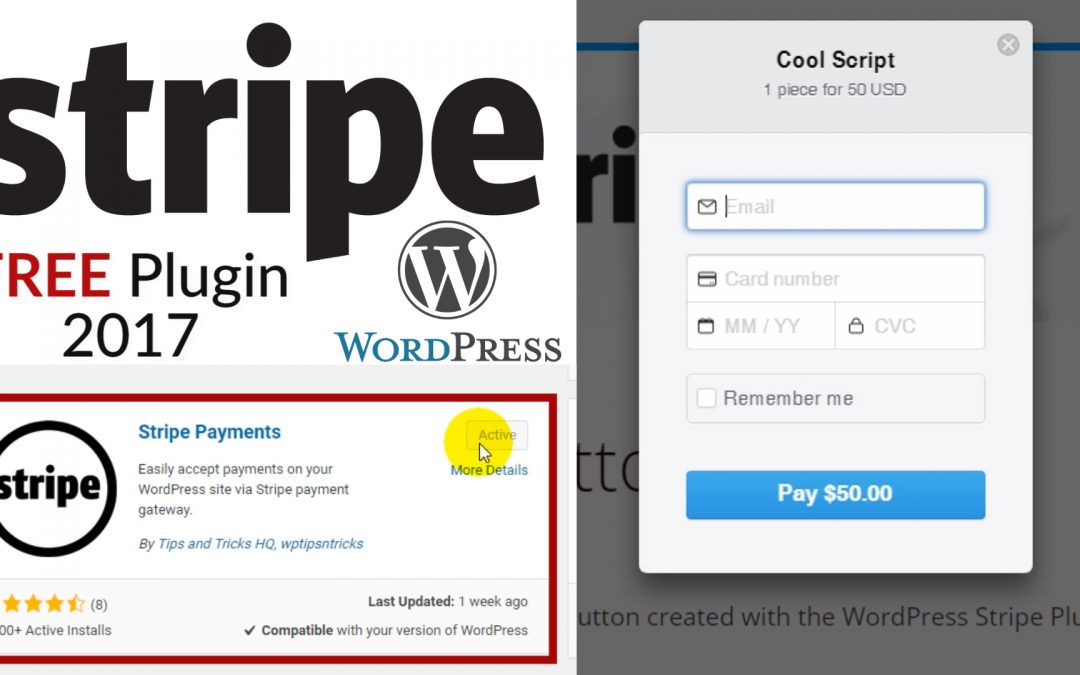 How To Accept Payments On Your Website With Stripe – Stripe Payment Plugin for WordPress